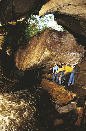 Real Journeys Te Anau Caves - Photo Gallery South Island