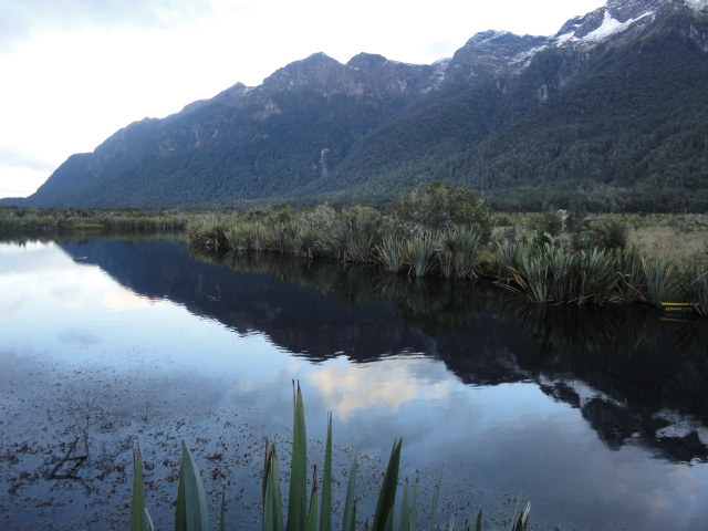 Mirror Lake - Photo Gallery South Island