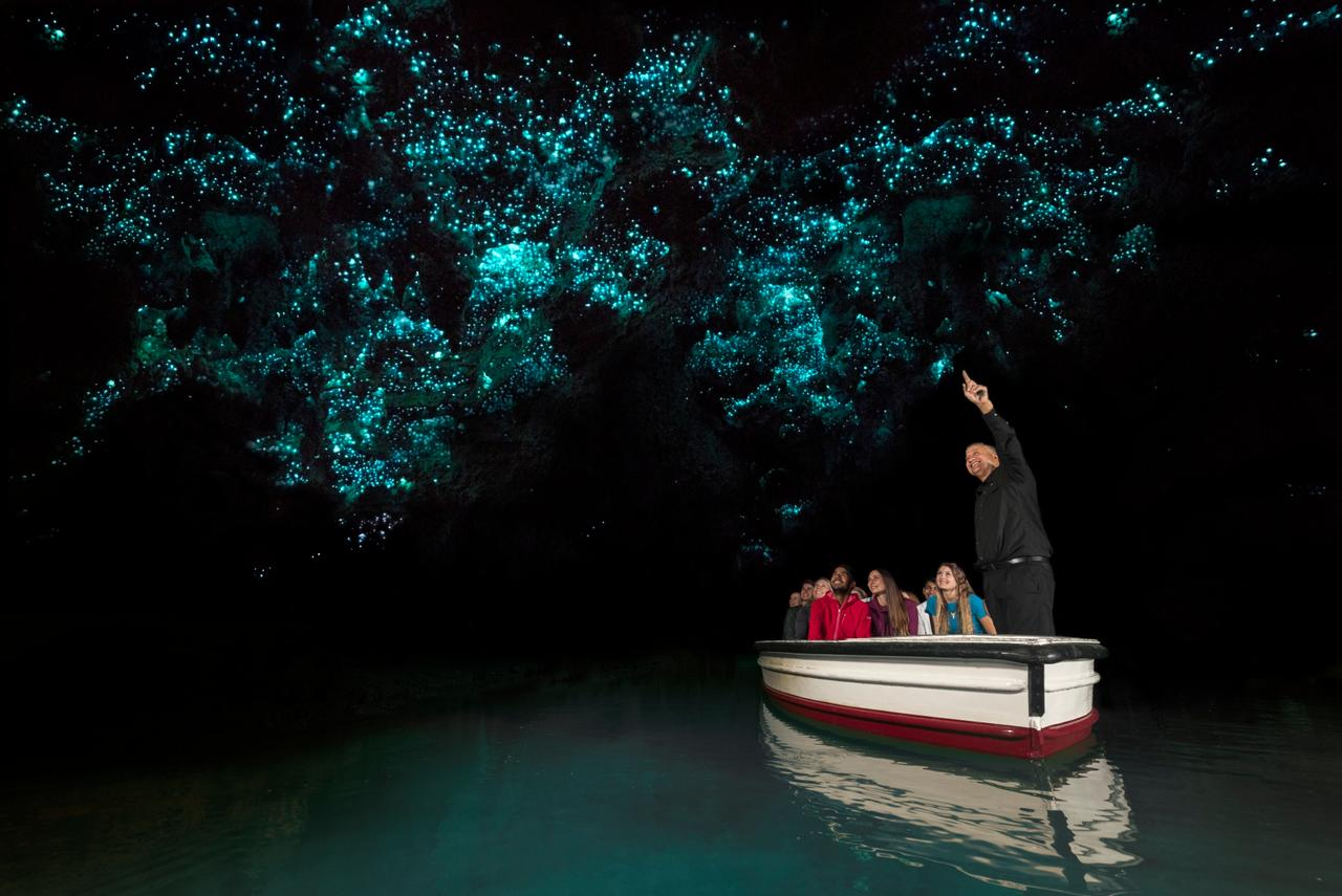 Waitomo Caves - Photo Gallery Auckland Rotorua